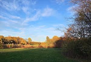 Herbst im Park Leipzig-Dösen (3)
